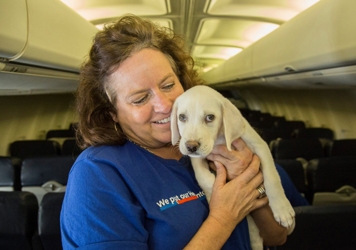 orphan-dogs-cats-rescued-southwest-airlines-harvey-texas-3-59b27da07d8fa__700