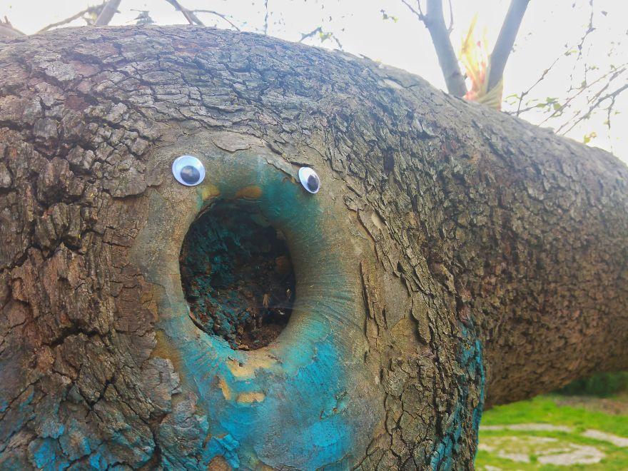 googly-eyebombing-street-art-bulgaria-7-592d22fb06ed8-jpeg__880