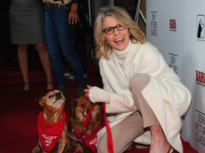 """Premiere Of Sony Pictures Classics' """"Darling Companion"""" - Red Carpet"""