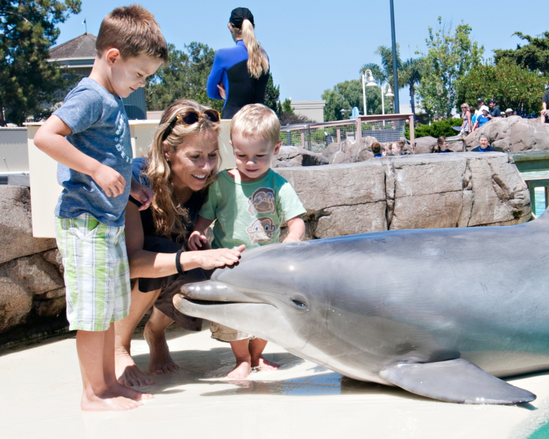 Sheryl Crow And Sons Visit SeaWorld San Diego